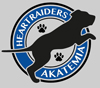 Heartraiders Akatemia